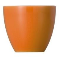 Thomas: Sunny Day Orange Coquetier